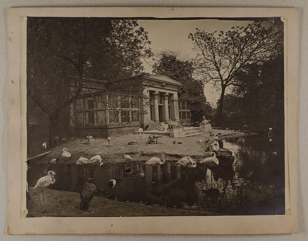 Beau Stelzvogelhaus Im Zoologischen Garten, Hamburg